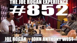 Joe Rogan Experience #852 – John Anthony West