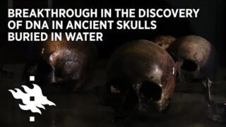 Breakthrough in the discovery of DNA in ancient skulls buried in water